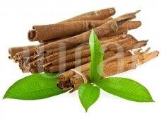 Cinamonų (Cinnamomum zeylanicum)