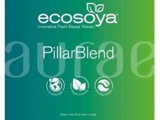 EcoSoya® Pillar