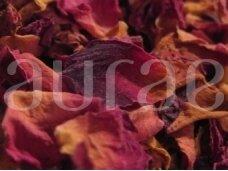 Raudonų rožių žiedlapiai